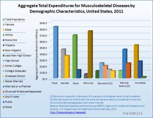 Aggregate Total Expenditures for Musculoskeletal Diseases by Demographic Characteristics, United States, 2011